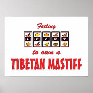 Glücklich zu eigenem ein tibetanischer Mastiff-Spa Posterdruck