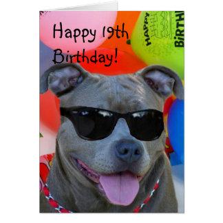 Glückliche 19. Geburtstag Pitbull Grußkarte