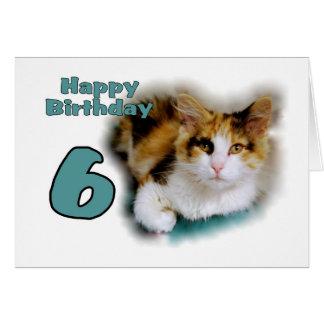 Glückliche 6. Geburtstags-Kaliko-Katzen-Karte Karte