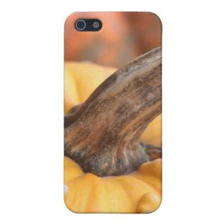 Glückliche Ernte! iPhone 5 Case