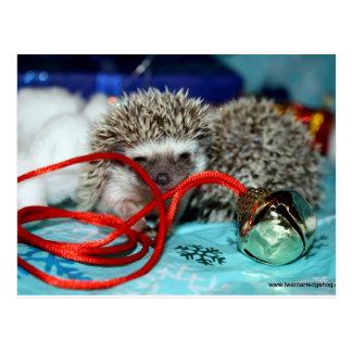 Glückliche Igels-Feiertage Postkarte