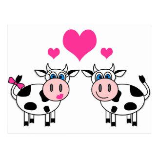 Glückliche Kühe in der Liebe Postkarte
