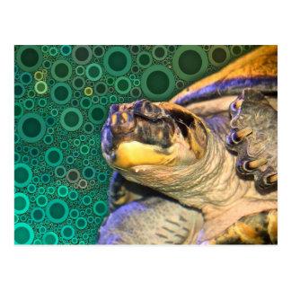 Glückliche Meeresschildkröte-Postkarte Postkarte