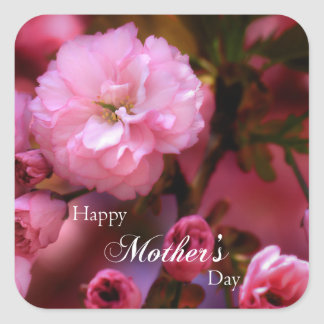 Glückliche Mutter-Tagesfrühlings-Rosa-Kirschblüten Quadratischer Aufkleber