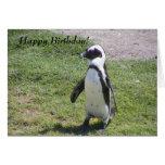 Glückliche Pinguin-Geburtstagskarte! Grußkarte