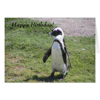 Glückliche Pinguin-Geburtstagskarte! Karte