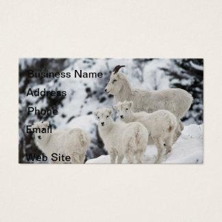 Glückliche Schaf-Familie Visitenkarte