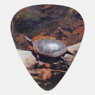 Glückliche Schildkröte Plektron