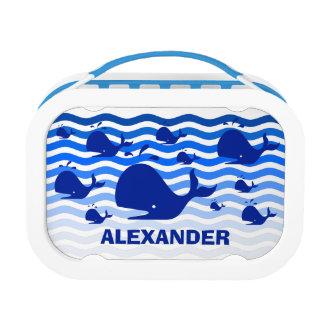 Glücklicher Blauwal des Spaßes in den blauen Brotdose