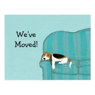 Glücklicher Couch-Beagle mit kundenspezifischer Postkarte