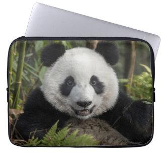 Glücklicher junger Panda, China Laptopschutzhülle