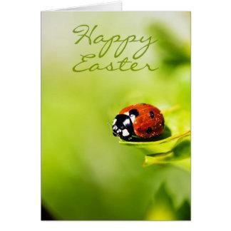 Glücklicher Ostern-Marienkäfer auf einem Horthorn Karte