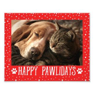 Glücklicher Pawlidays | roter Feiertag Kunstphoto