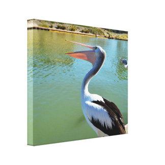 Glücklicher Pelikan, der heraus einen Sturm singt, Leinwanddruck