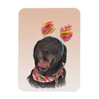 Glücklicher schwarzer Labrador Magnet