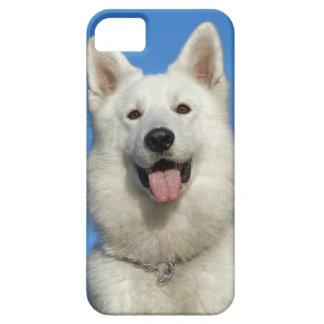 Glücklicher Schweizer Schäferhund Etui Fürs iPhone 5