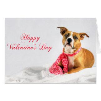 Glücklicher Valentinstag Pitbull Welpe Karte
