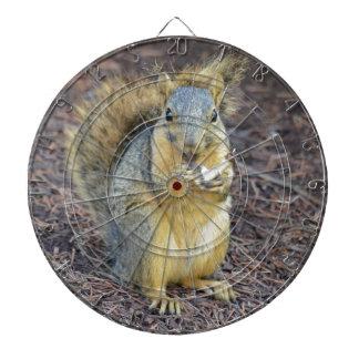 Glückliches hungriges Eichhörnchen Dartscheibe
