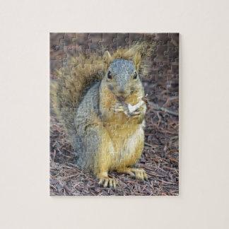 Glückliches hungriges Eichhörnchen Puzzle