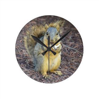 Glückliches hungriges Eichhörnchen Runde Wanduhr