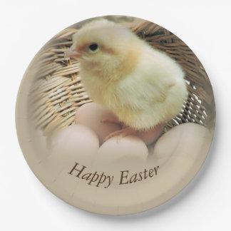 Glückliches Ostern-Baby-Küken in einem Korb Pappteller