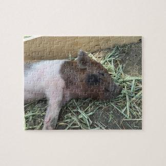 Glückliches Schwein-Puzzlespiel Puzzle