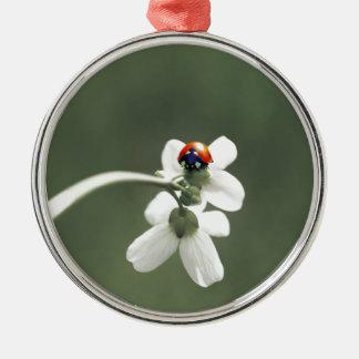 Glücksbringer auf der Blumenwiese Rundes Silberfarbenes Ornament