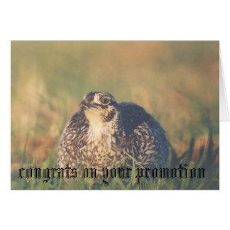 Glückwunsch auf Ihrer Werbeaktion Grußkarte