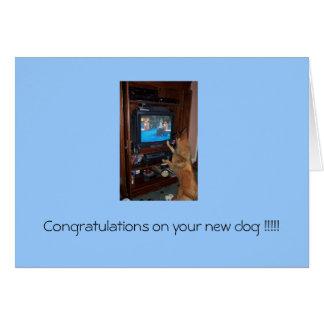 Glückwünsche auf Ihrem neuen Hund!!! Karte