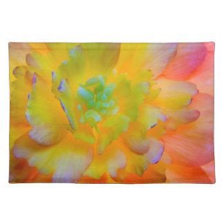 Glühende Begonie blühen | Seabeck, WA Stofftischset