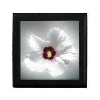 glühende weiße Blumenblätter Geschenkbox