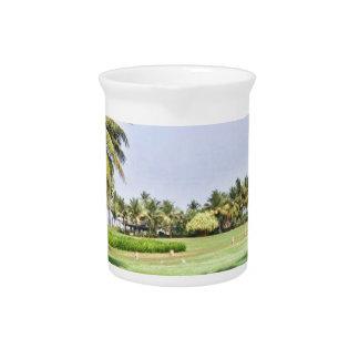 Goa Indien 2 Getränke Pitcher