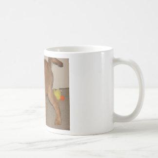Golden retriever, das weg es rüttelt kaffeetasse