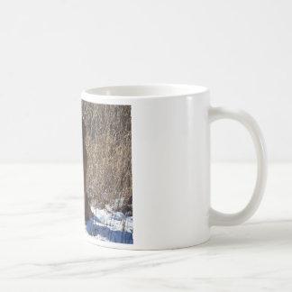 Golden retriever-Hund Kaffeetasse