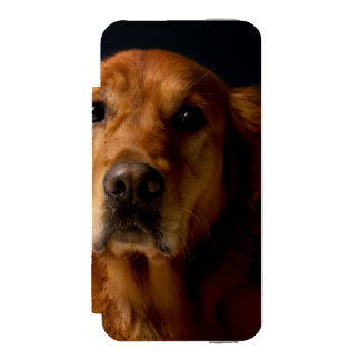Golden retriever incipio watson™ iPhone 5 geldbörsen hülle