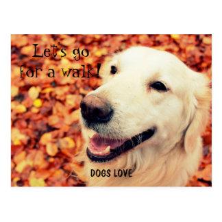 GOLDEN RETRIEVER Postkarte für Hundeliebhaber