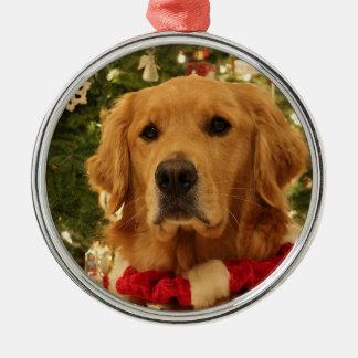Golden retriever-Weihnachtsverzierung 3 Silbernes Ornament