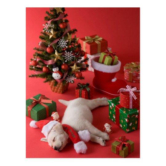 golden retriever welpe und weihnachten postkarte zazzle. Black Bedroom Furniture Sets. Home Design Ideas