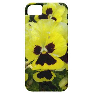 Golden_Yellow_Pansies, _ iPhone 5 Schutzhüllen