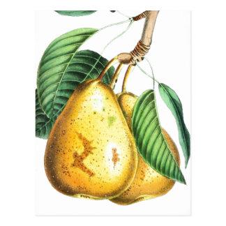 Goldene Birne Rezept-Karte Postkarte