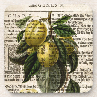 Goldene Esperen Pflaumen-Blume Untersetzer
