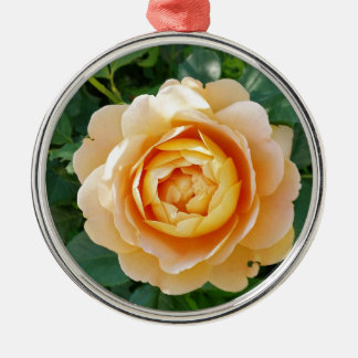 Goldene farbige Rose Silbernes Ornament
