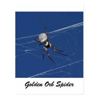 Goldene Kugel-Spinne Postkarte