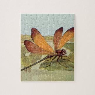 Goldene Libelle Puzzle