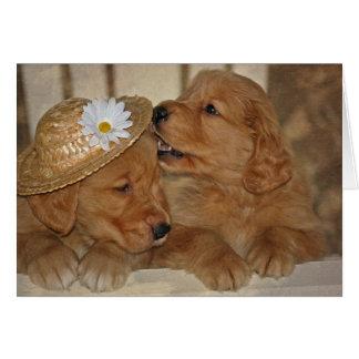 Goldene Liebe für Jahrestag Mitteilungskarte