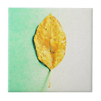 Goldene Minze durch JP Choate Fliese