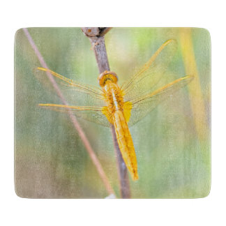 Goldene und gelbe Libelle Schneidebrett