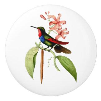 Goldener angebundener Saphir-Kolibri Keramikknauf