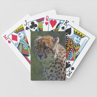 Goldener Gepard-Spielkarten Bicycle Spielkarten