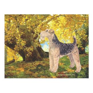 Goldener Herbst Postkarte